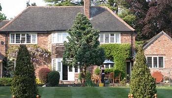 Home | Cheshire Tree Surgeons